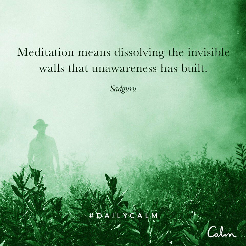 "Meditationly on Twitter: ""Meditation means dissolving the invisible walls  that unawareness has built. #Meditation #Mindfulness #Awareness #Quote  #DailyCalm… https://t.co/KaxD2x1IND"""