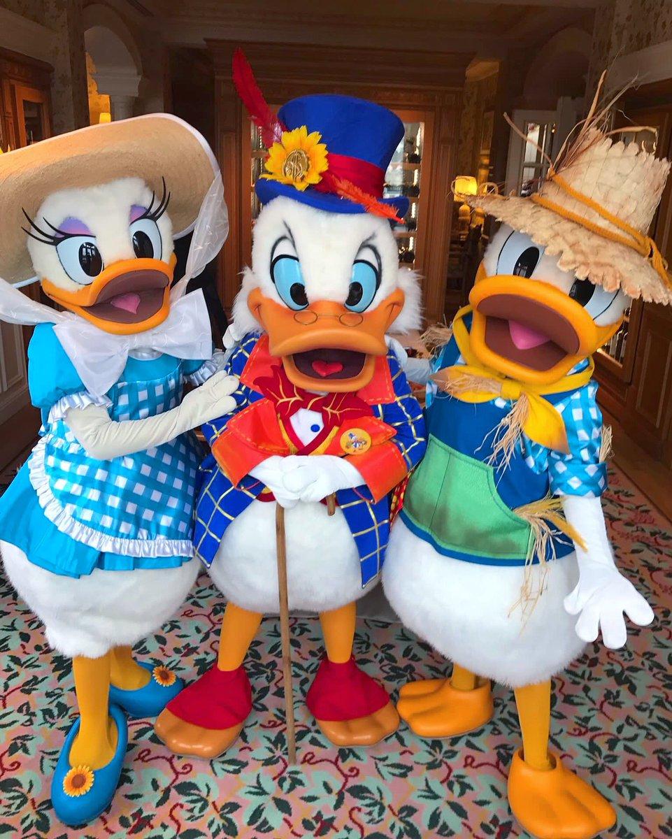 It&#39;s a DUCK blur at Disneyland Pari$  Aren&#39;t they adorable?  #ScroogeMcDuck #Donald #Daisy #DisneylandParis #Halloween @DisneyDuckLover<br>http://pic.twitter.com/0v1SFSOA2v