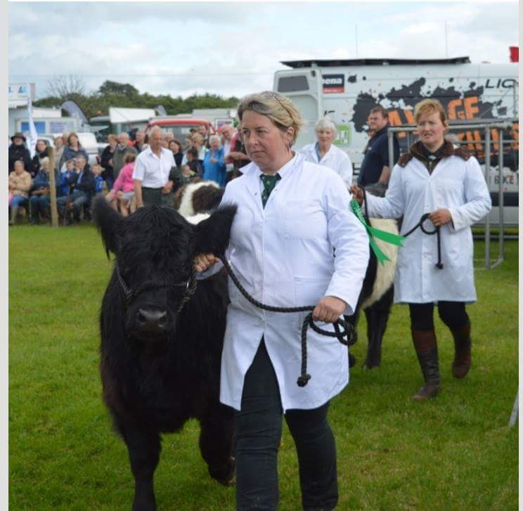 Serious pose, helping show @Belted_Galloway at Stewartry Show. #3rdplace