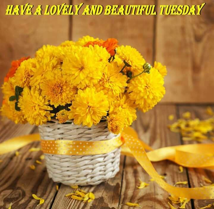 #GOODMORNING #WOW!!!   #NEW DAY TUESDAY #10th of OCT #WELCOME  #WISHING YOU ALL A WONDERFUL DAY  #BE HAPPY  #BE BLESSED  #CHEERs<br>http://pic.twitter.com/iOR00ohW5k