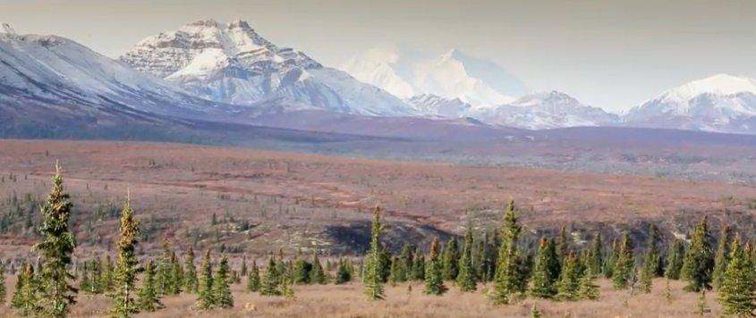 Looking for alaska characterization