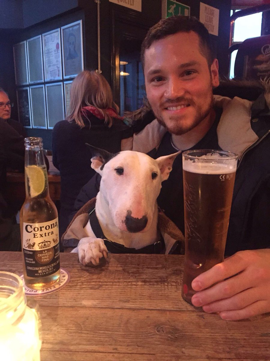 14b47516bf #corona #cheekypint #bullterrier #beer #dogsoftwitter #dogsofinstagram  #puppy #DogLover #bullies #brighton #pub #Beers #Dog #uk…  https://t.co/PwW3lkg1wr