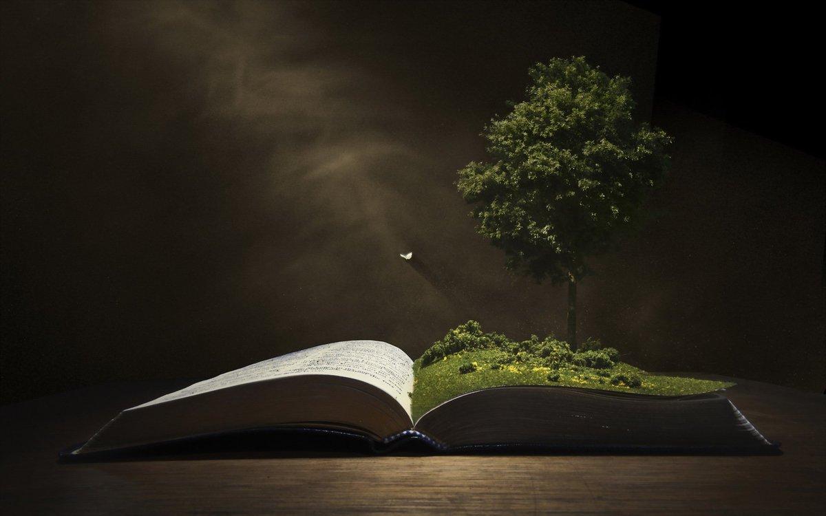 Экологические характеристики растений