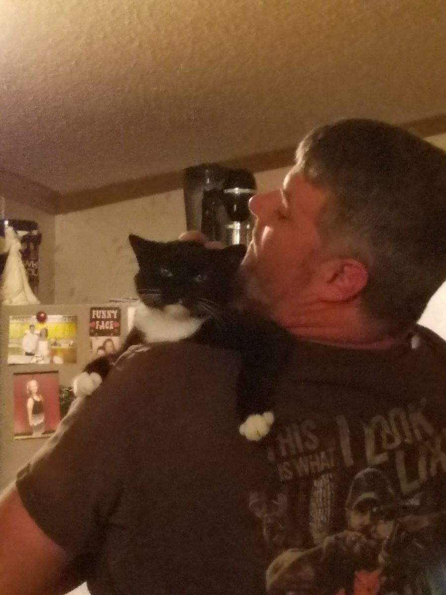 Mittens can be the least affectionate cat. Here&#39;s proof! #cats #helpme #meowmeow<br>http://pic.twitter.com/NvfqQ5ompy