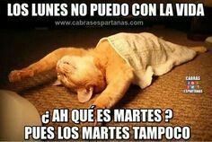 @sentowilma @pedro_cordob @MakiJC #BuenosDias #FelizMartes chic@s.. <br>http://pic.twitter.com/KzunsImXCk