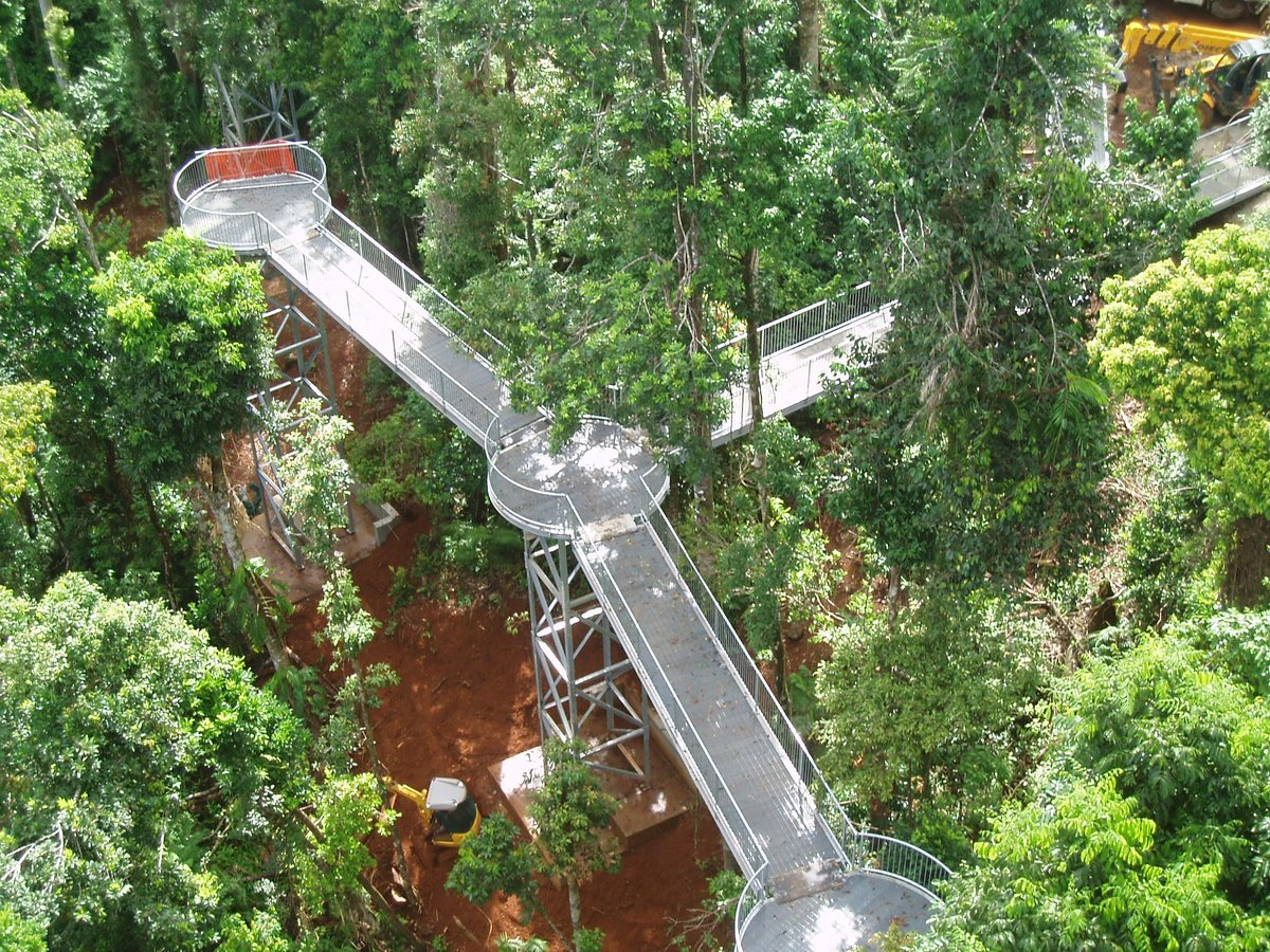 Arup Australasia on Twitter  Mamu Rainforest Canopy Walkway is a stunning elevated tree-top trail through the lush rainforest //t.co/l9yJwYgb1Yu2026 ... & Arup Australasia on Twitter: