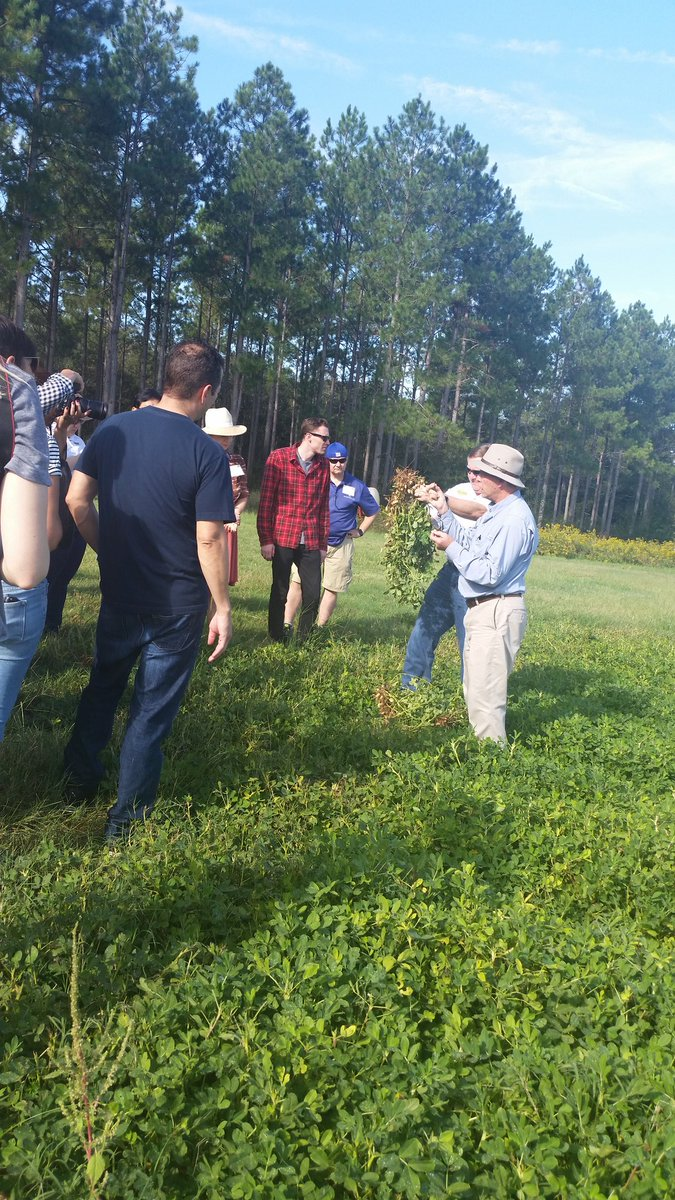 Showing the peanut growing and harvesting process at Casey Cox's farm...