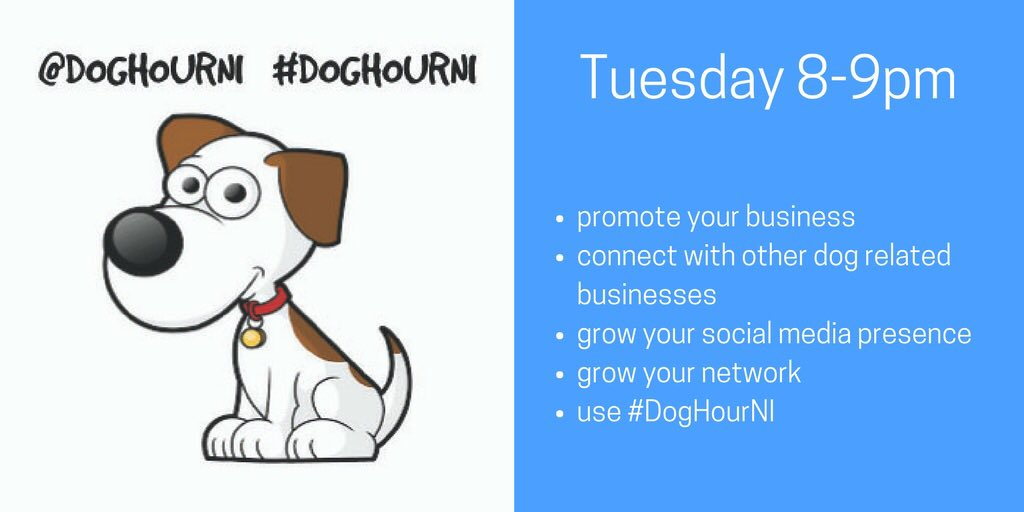 Check in for a woofing #DogHourNI tonight from 8-9pm...#dogfriendly