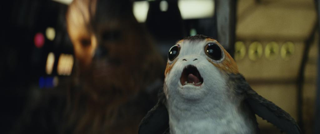 #TuesdayThoughts: Porg porg porg. #TheLastJedi https://t.co/VcMIXlZypj