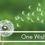 One Wish!  Check out the latest info about this grant opportunity! https://t.co/Prq2Tt7RTn