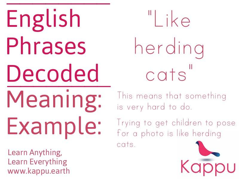 Kappu On Twitter Like Herding Cats A Strange English Idiom Find Out What It Means Å¦æ±‰è¯ Å¦è‹±è¯ ȋ±è¯ Https T Co Jzzvntcazo