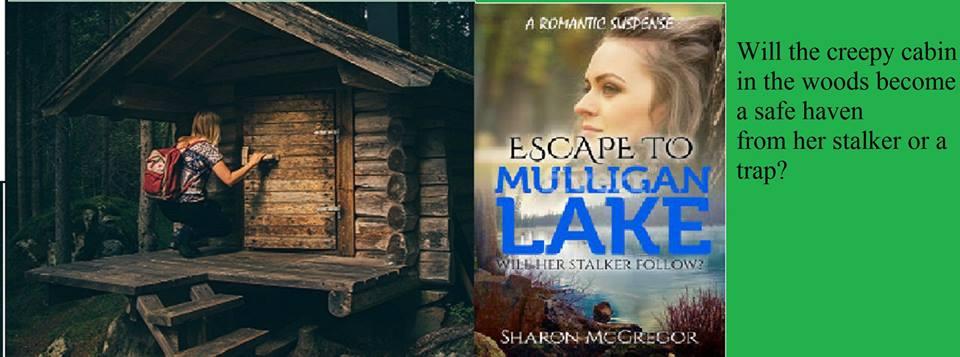 READ FREE on Kindle Unlimited. #mystery, #suspense, #romance.  https://www. amazon.com/Escape-Mulliga n-Lake-Romantic-Suspense-ebook/dp/B06XCJRS4M/ref=asap_bc?ie=UTF8 &nbsp; … <br>http://pic.twitter.com/R7WH2RHzXL
