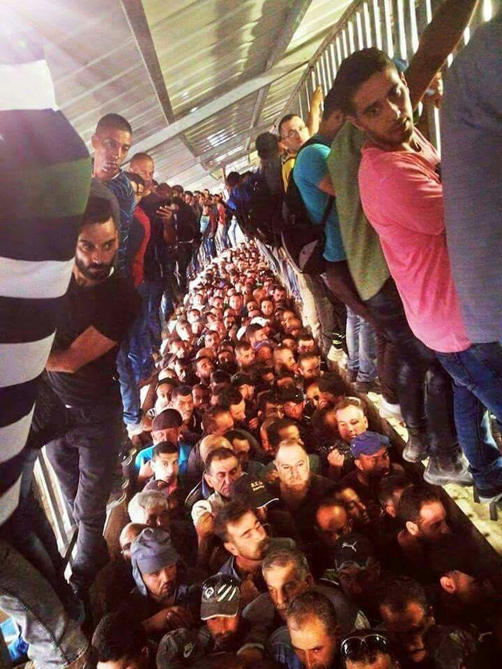 Non ! Il ne faut pas être #Palestinien pour comprendre leur souffrance. Il suffit juste d\