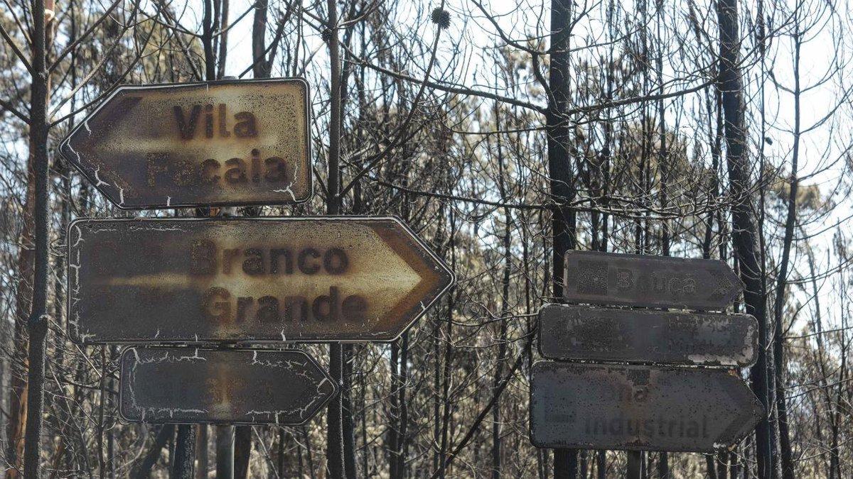 Vítimas de Pedrógão Grande 'voltaram atrás' com os últimos fogos https://t.co/4mBSw3fFJf