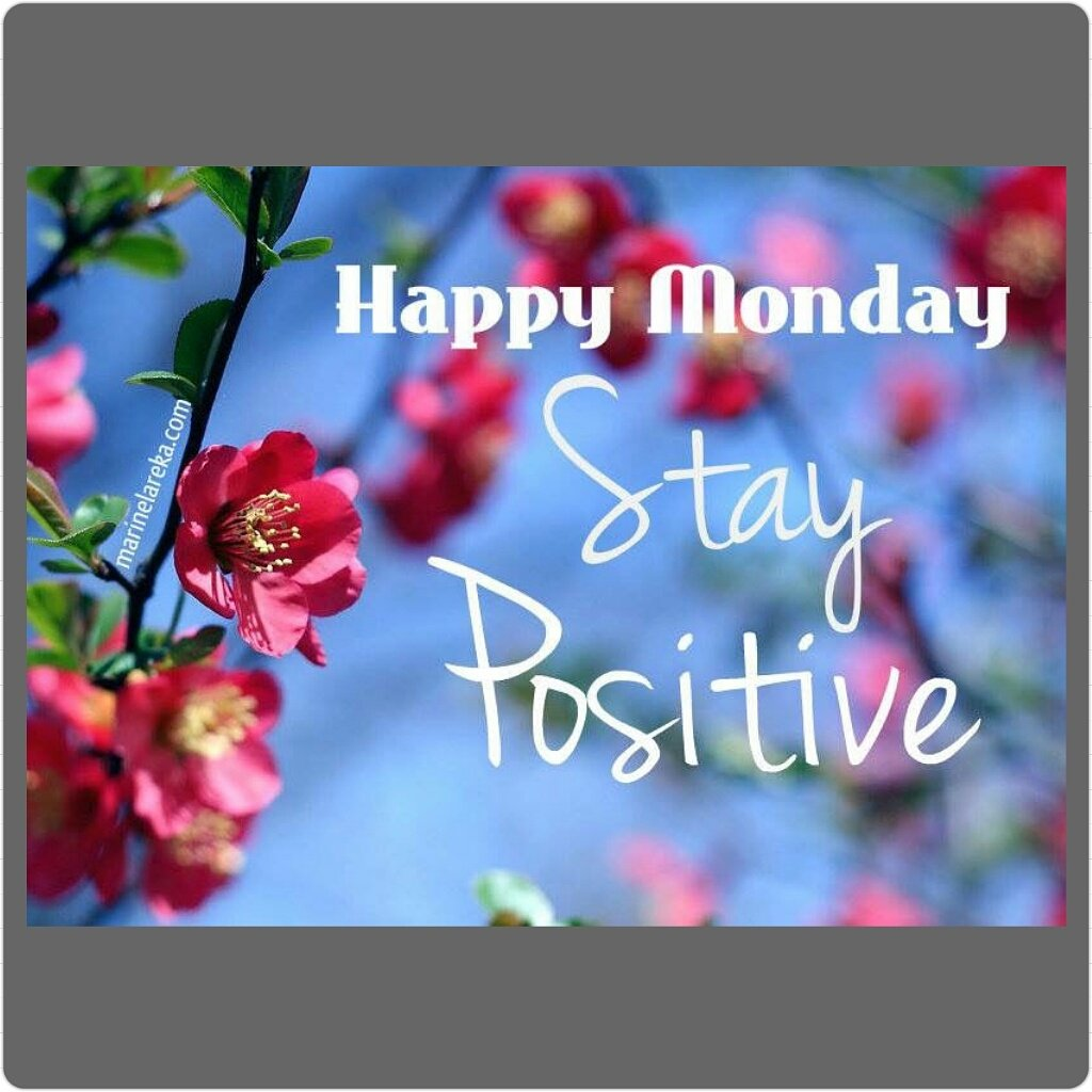 https://www. etsy.com/shop/JourneyRo seCreations &nbsp; …  #Monday #happy #stay positive #etsy ##etsyseller #homedecor #giftideas<br>http://pic.twitter.com/pxD95LzipR