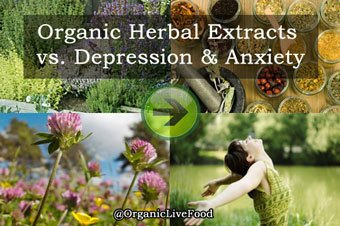 #LatestNews at  http:// SeattleOrganicRestaurants.com  &nbsp;   : Study finds out that anti-anxiety drugs and sleeping pills are linked to high mortality rate…<br>http://pic.twitter.com/1DBY3cGNfq