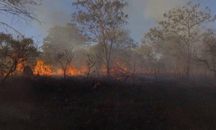 Incêndio na Chapada dos Veadeiros já atingiu 35 mil hectares. https://t.co/XQdCKX72Tj