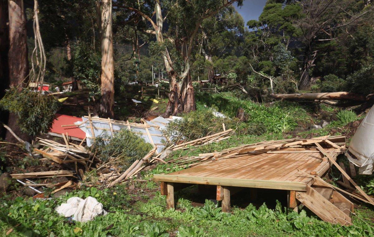 Estado deberá pagar $300 millones a familiares de víctima del tsunami...