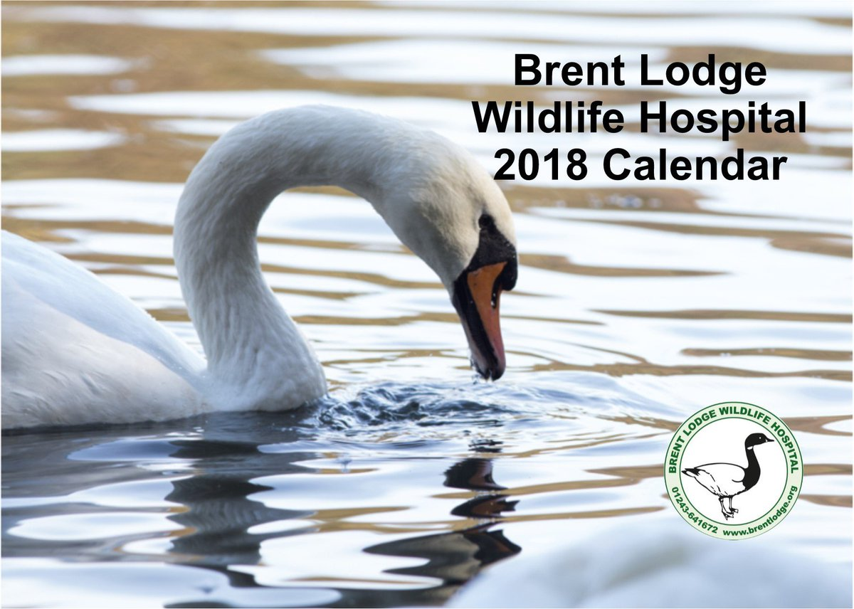 test Twitter Media - Our new 2018 Calendar is now available on our E-shop or from Brent Lodge. Yours for only £4.49! https://t.co/QTf5ebuUKZ https://t.co/cVEIpJbGPG