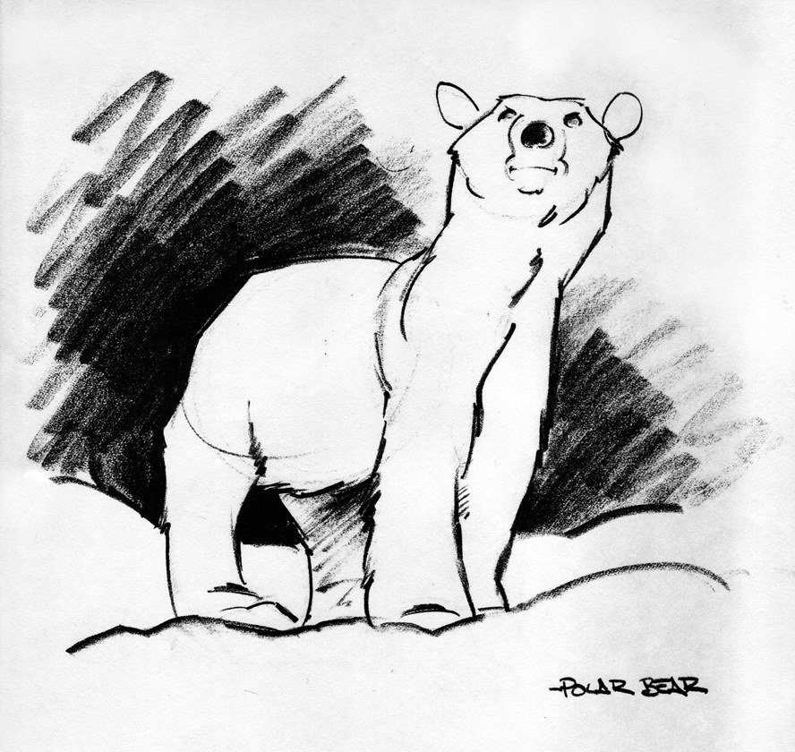 #Inktober 23: Last week of this, thanks again for following along. #Polarbear #sketch #drawing #sketchbook #bear<br>http://pic.twitter.com/Wpu6wMESdU