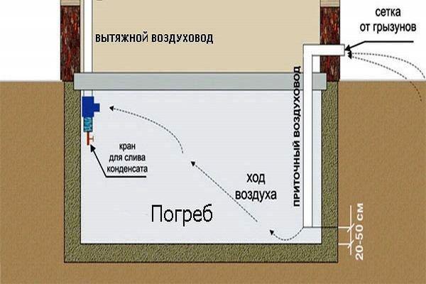 Инструкция фотоаппарат sony
