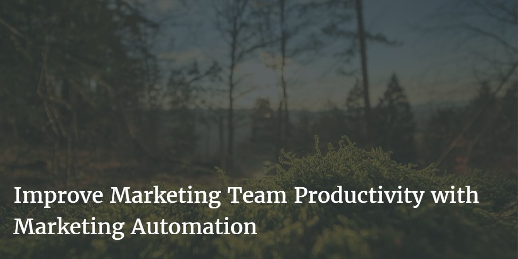 Improve marketing team productivity with automation  https:// buff.ly/2yIwO9I  &nbsp;   #marketingautomation <br>http://pic.twitter.com/Y67mdTLioN