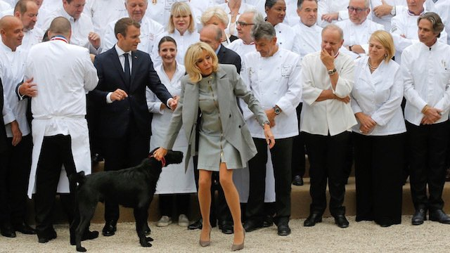 Irish Times Video On Twitter Video Doggyleaks Emmanuel Macron S Dog Nemo Interrupts A Meeting By Urinating On An Elysee Palace Fireplace Https T Co Yafjogusx7 Https T Co Vcqrqquzyv