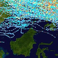 RT @bingregory: The path of every typhoon in the last 25 years.   Sabah is LITERALLY the Land Below The Wind. https://t.co/nQGjk1YVpw