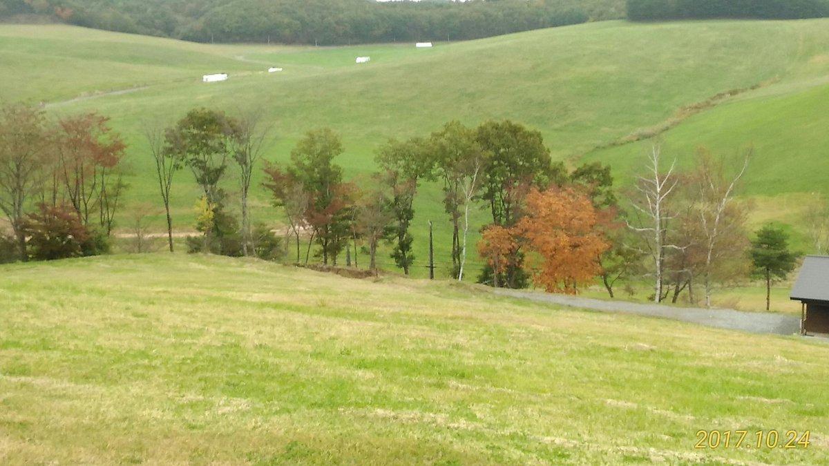 色づき始めたあぶくま高原と『福島の花』