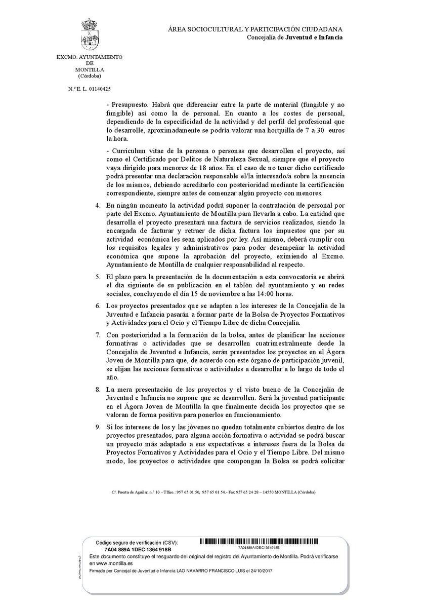Lujoso Plantilla De Curriculum Vitae De Juventud Embellecimiento ...