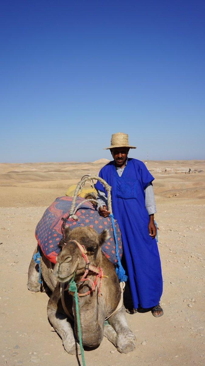 The Pretzel Aka The Camel Ride