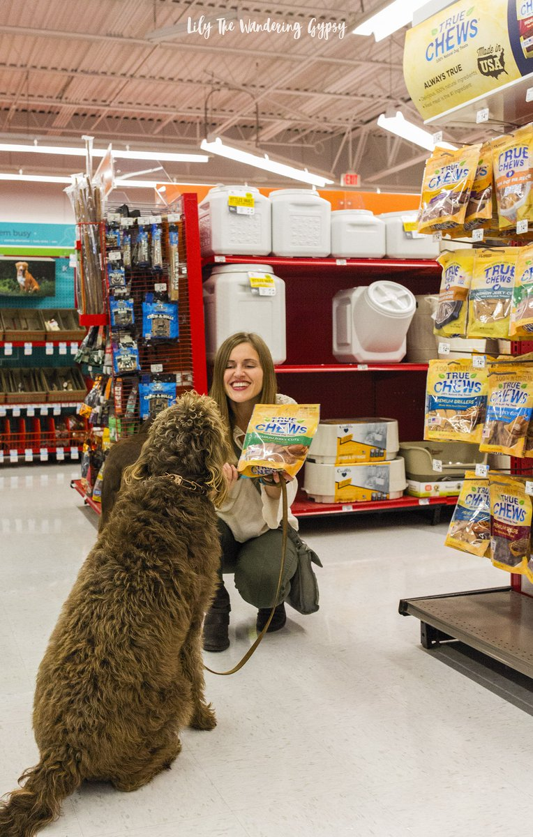 100+ [ Is Petco Open On Christmas ] | 12 Best Images About Black ...