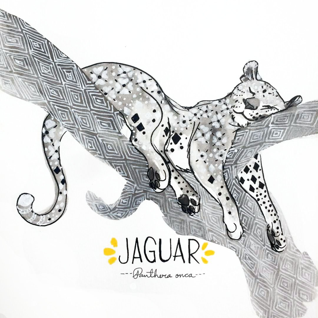 I now give you the jaguar for #InktoberPorMexico day 13! #Inktober #FuerzaMexico   http:// erikameza.com/mexico  &nbsp;   #MexicanEarthquakeRelief #19S #7S<br>http://pic.twitter.com/PbcWUzmn4S