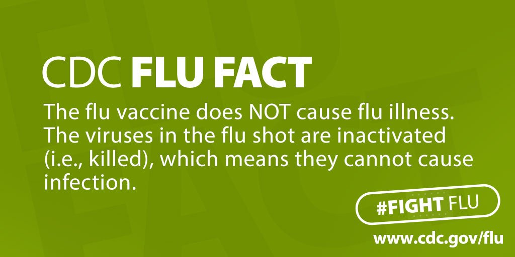 Image result for flu vaccine does not cause flu