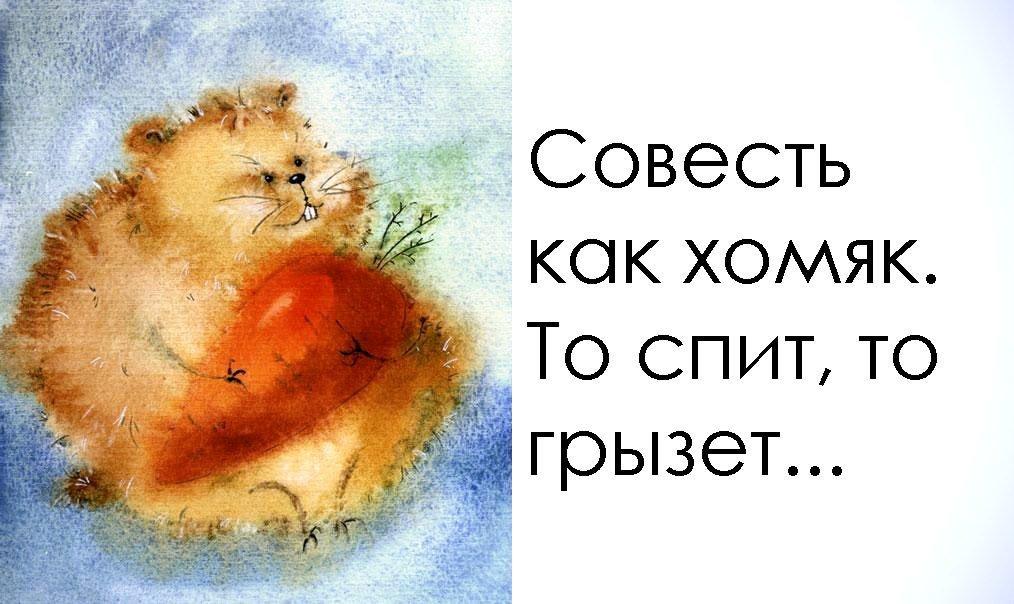 Картинки о совести