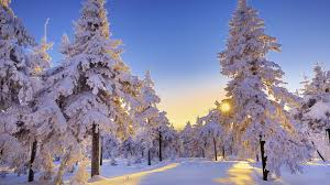 Where is the cold weather?! Its the middle of October and it still feels like summer outside! #winterwonderland #georgia <br>http://pic.twitter.com/PmB16k1ULq