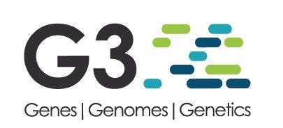 test Twitter Media - BIOL310 Student Research Published in Scientific Journal @GeneticsGSA: https://t.co/mPJsbi80kC #SciFri https://t.co/ebWmr4HRHL