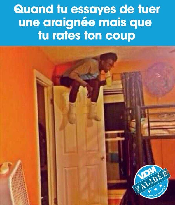 On ne plaisante pas avec les araignées qui disparaissent 😱   #VDM #viedemerde #VDMphoto #findumonde #araignée