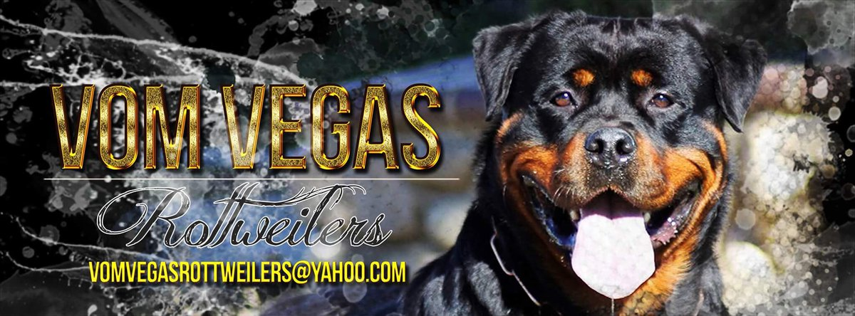 For rottweilers