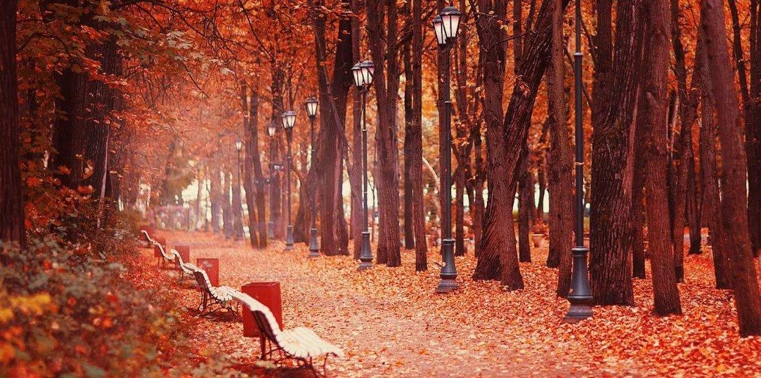 Парк горького moscow calling