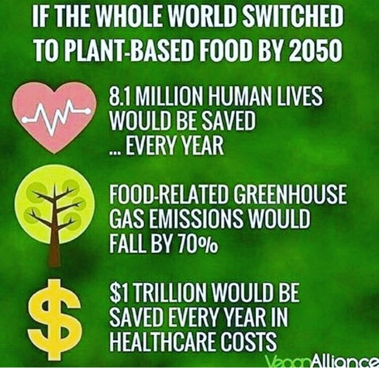 Saving the world is a choice!!   #GoVegan #SaveThePlanet #MakeTheSwitch<br>http://pic.twitter.com/0dTNRENikt