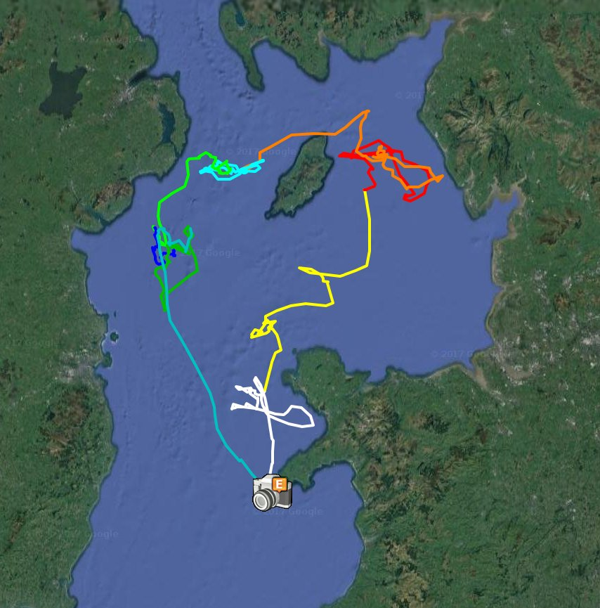 As I get stuck into analysing data from the summer&#39;s tracking project on @Enlli_Bardsey, most Manx Shearwaters will now be off #SouthAmerica <br>http://pic.twitter.com/8LyCO3Wz8w