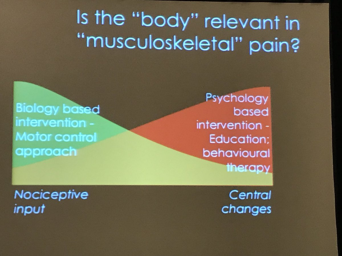 Do we treat the body or the mind? Yes. @paulwhodges #WCAPP17 <br>http://pic.twitter.com/PENoiwv0A8