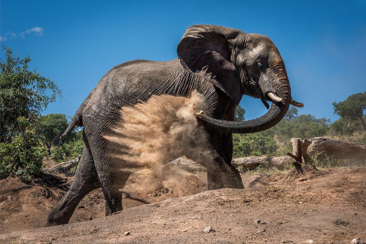 National Geographic Fotoğrafçılarından Muhteşem  Fotoğraflar