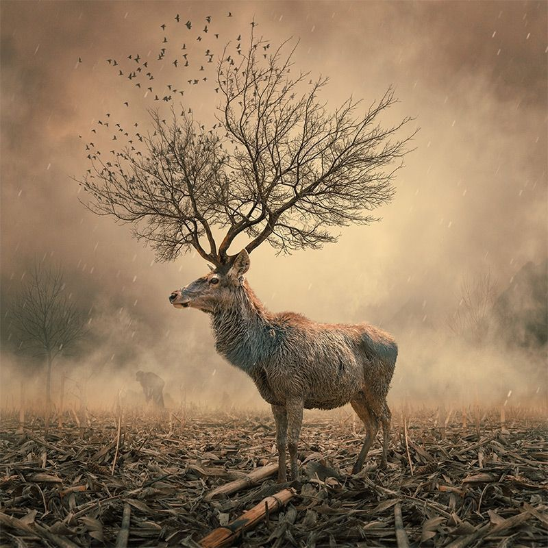 If there is a magic in #story #writing, no one has ever been able to reduce it to a recipe John Steinbeck #Art Caras<br>http://pic.twitter.com/NyLqOuzWNx
