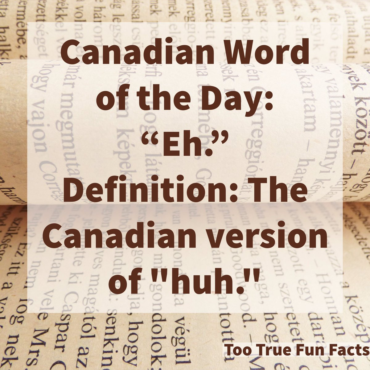 Too True Fun Facts On Twitter Word Of The Day Wordoftheday