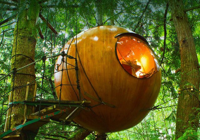 Unleash your inner child and crash one of these amazing treehouse resorts https://t.co/raeTcBkgJq https://t.co/NeZ4yxo3bR