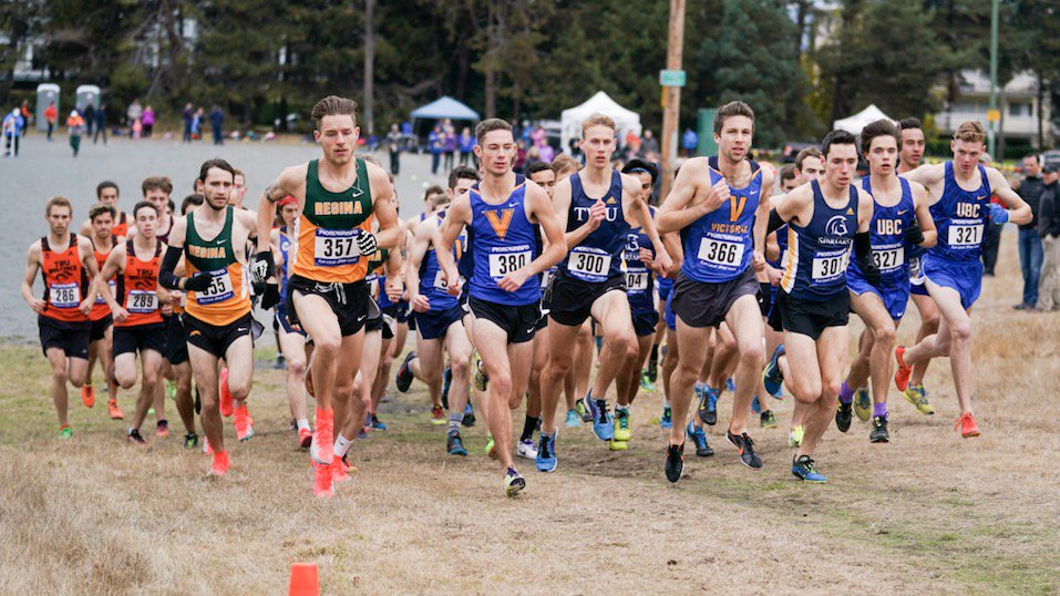 cross country teams efforts - 800×600