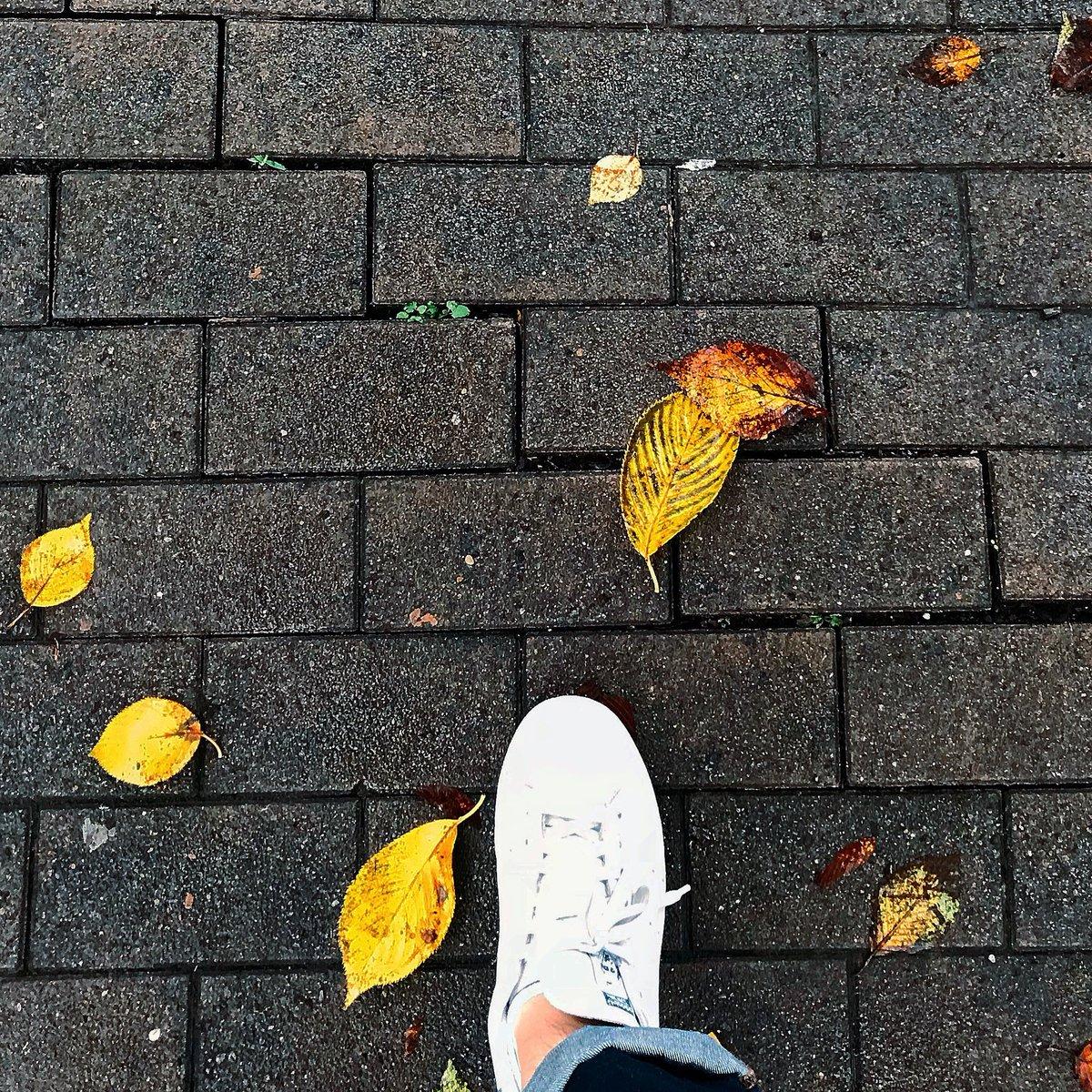 The start of autumn with chilly rainy day  #StanSmith #Navy #adidas #スタンスミス #ネイビー #アディダス #kicks #sneaker #スニーカー #WhereIStand #足元くらぶ pic.twitter.com/mVb1oEqRbb
