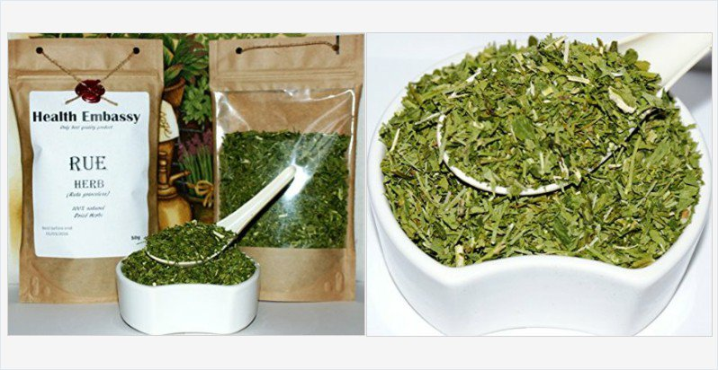 Rue Herb 50g (Ruta graveolens) - Health Embassy - 100% Natural (50g) #rue #herb #herbs #tea  https://www. amazon.co.uk/Rue-Herb-50g-R uta-graveolens/dp/B017Z69KPM?ie=UTF8&amp;*Version*=1&amp;*entries*=0 &nbsp; … <br>http://pic.twitter.com/XWOdIhwOOd